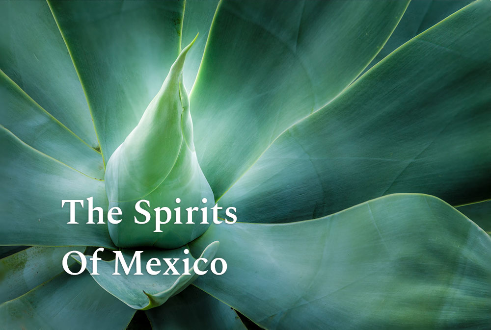 spirits-of-mexico